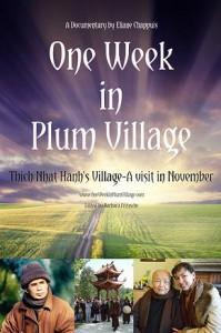 one-week-in-pv