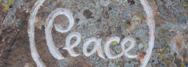 Peace Tree, photo courtesy of Ray Hemachandra