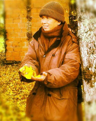 TNH Autumn gingko tree