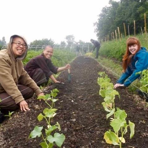 sisters-hands-earth-happy-farm (1)