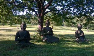 Statues de Bouddha dans le parc de EIAB